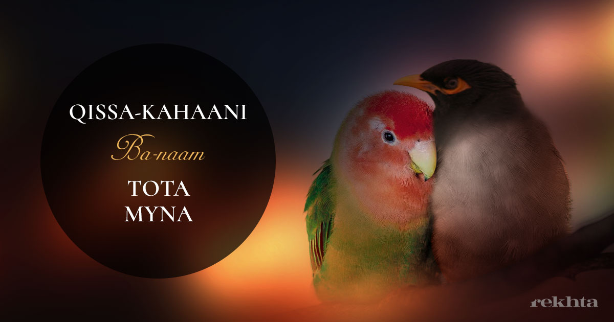 parrot, urdu, myna, story, tale, ancient, kahaani